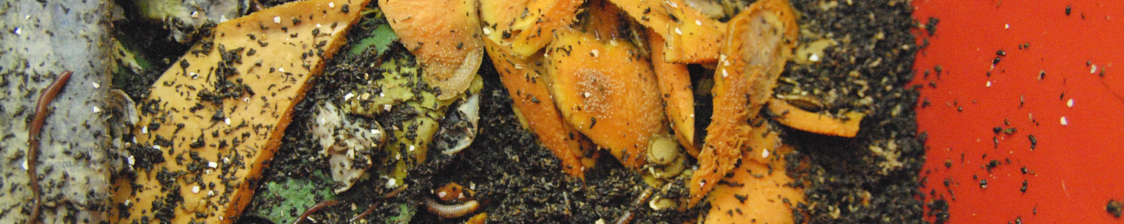 Mit unseren Kompostsystemen verarbeiten wir Bioabfälle zu Dünger für deinen Biogarten